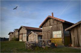 BLOG-DSC_09491-vol sur la cabane 120 port Larros