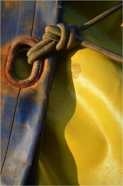 BLOG-DSC_09892-bache bleu jaune oeillet sandow