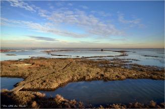 BLOG-DSC_10122-rivages de Meyran et accès tonne de chasse 2