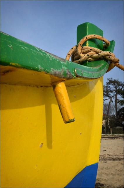 BLOG-DSC_11089-pinassotte Ferret Capie plage Claouey