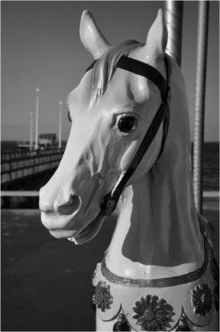 BLOG-DSC_12626-cheval manège Peyneau et jetée Eyrac N&B