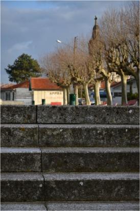 BLOG-DSC_12712-escalier parking petit port Arcachon