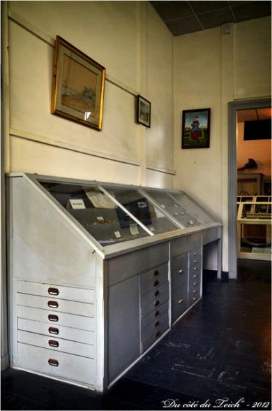 BLOG-DSC_17108-vitrines musée aquarium Arcachon 1