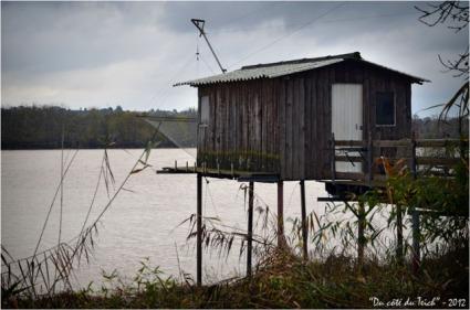 BLOG-DSC_17885-cabane Rives d'Arcins Garonne