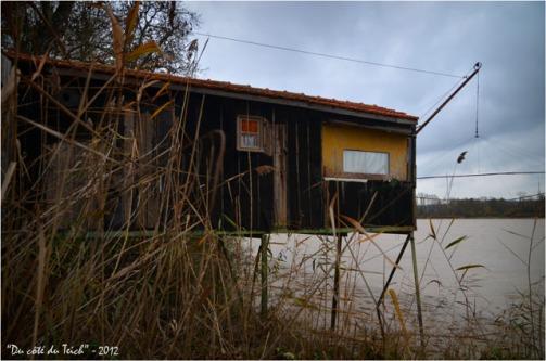 BLOG-DSC_17909-cabane Rives d'Arcin Garonne