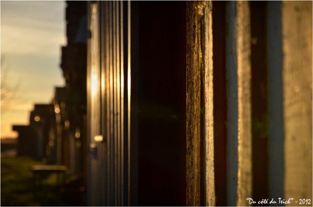 BLOG-DSC_18208-lumière du soir bardages cabanes port des Tuiles Biganos