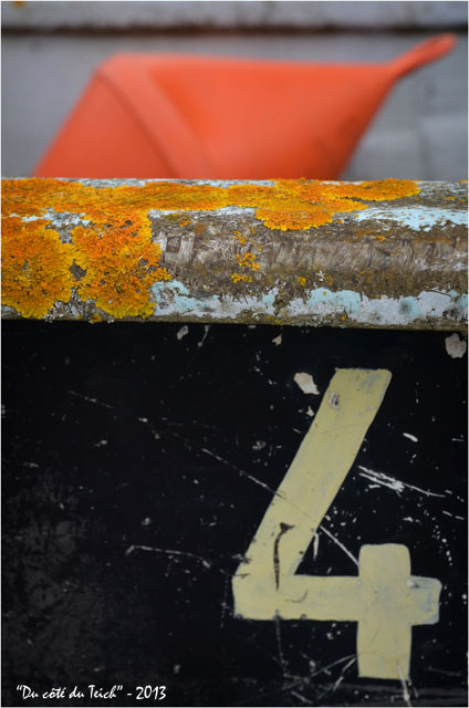 BLOG-DSC_18888-coque 4 et bouée orange