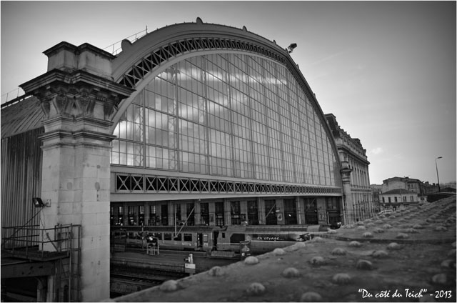 BLOG-DSC_19267-verrière gare Bordeaux St Jean N&B