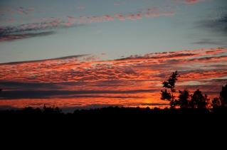 CP-DSC_1218-soleil couchant