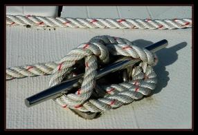 CP-DSC_1877-noeud blanc et rouge