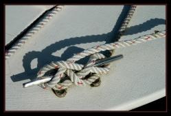 CP-DSC_1878-noeud blanc et rouge