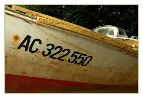 CP-DSC_2200-AC322550