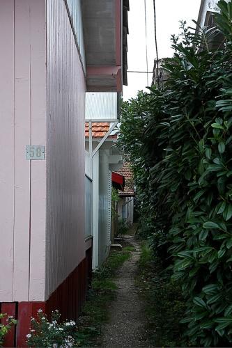 CP-DSC_2852-maison rose GP