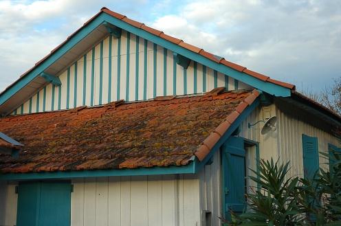 CP-DSC_2929-toit maison bleue CF