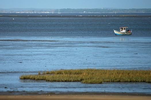 CP-DSC_3294-petit bateau