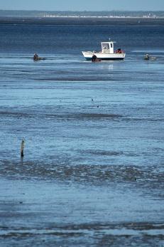 CP-DSC_3306-bateau & 3 ramasseurs de coques