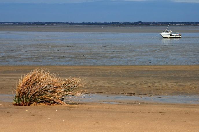 CP-DSC_3353-sable, herbe & bateau copie
