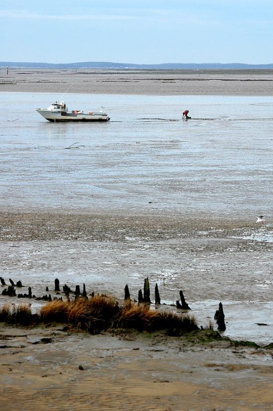 CP-DSC_3366-vue plongeante plage & Bassin