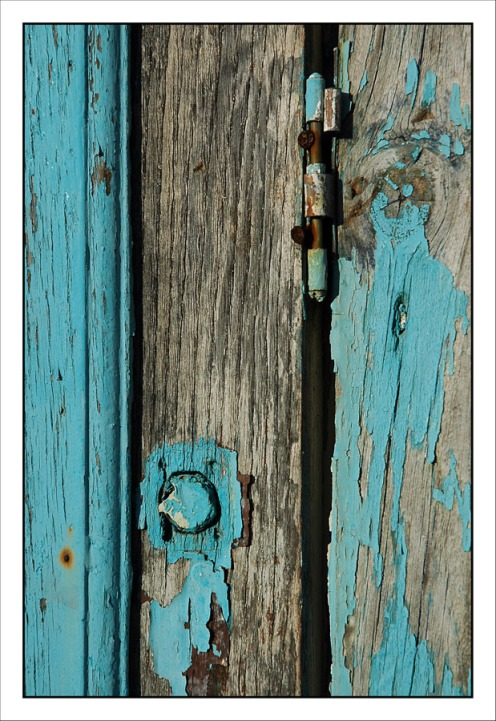 CP-DSC_3831-bois bleu