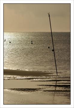 CP-DSC_3841-plage à contre-jour REC