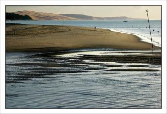 CP-DSC_3847-dune & plage