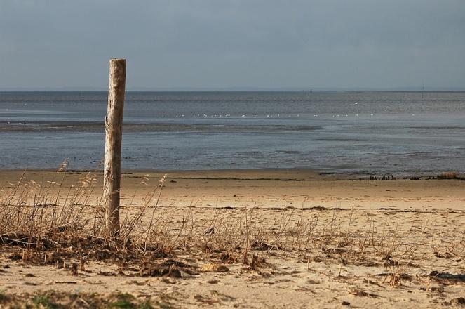 CP-DSC_4115-piquer & plage