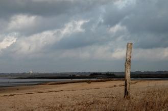 CP-DSC_4117-piquet & plage
