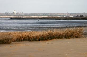 CP-DSC_4125-plage & Audenge