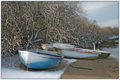 CP-DSC_4285-barques & buissons