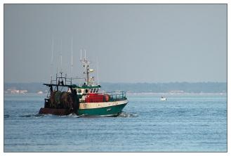CP-DSC_4534-retour de pêche
