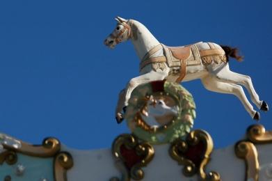 CP-DSC_4599-cheval manège