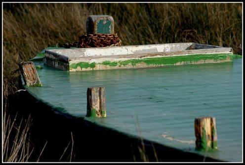 CP-DSC_4713-proue barge verte