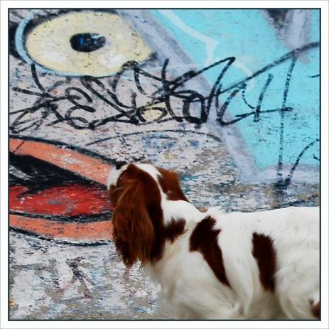 CP-DSC_6877-rec-tag & chien, la voix de son maître