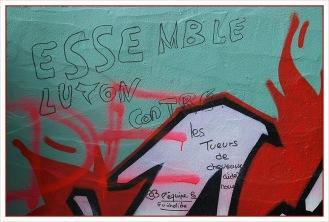 CP-DSC_6886-tag essemble