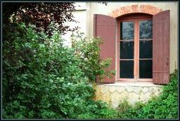 CP-DSC_7297-fenêtre & mur de verdure