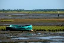 CP-DSC_7494-barque bleue marée basse