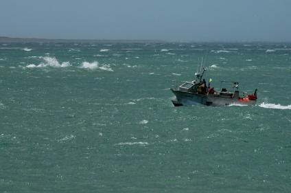 CP-DSC_7526-retour de mer