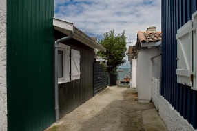 CP-DSC_7624-ruelle bois vert bleu, & plate
