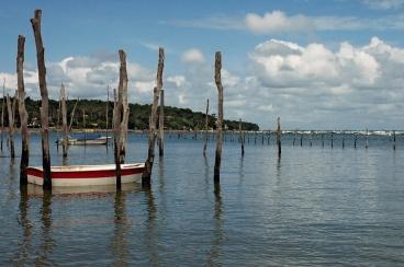CP-DSC_7632-piquets, barque & rivage Piraillan