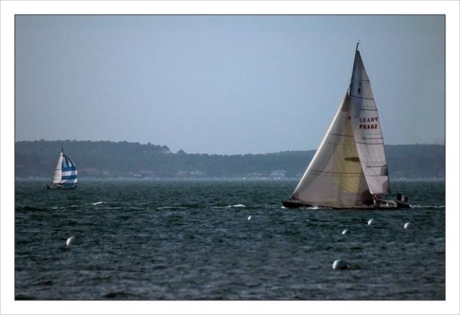 CP-DSC_7659-voilier blanc & spi bleu-blanc