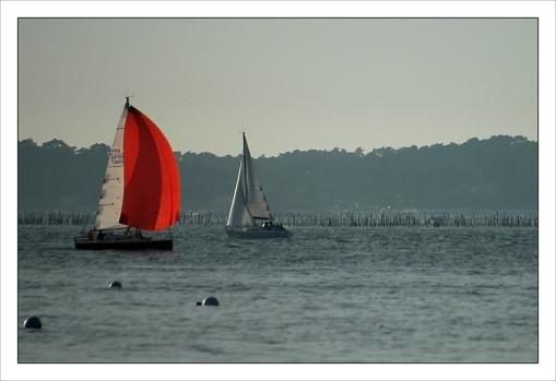 CP-DSC_7678-spi rouge & voilier blanc