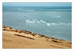 CP-DSC_7756-dune, jet-skis & Arguin sud