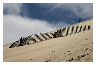 CP-DSC_7812-barrière dune & enfant