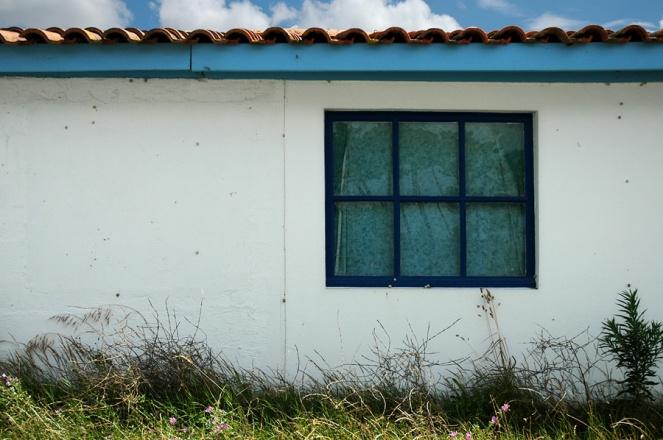 CP-DSC_7936-fenêtre bleue & reflets pins