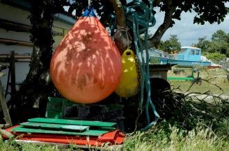 CP-DSC_7941-bouées sous l'arbre & bateau