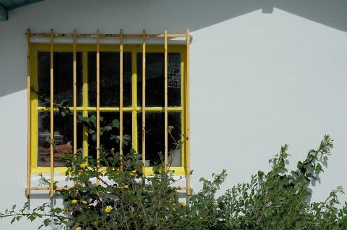 CP-DSC_7974-fenêtre & grille jaune
