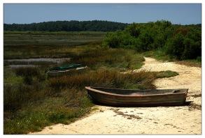 CP-DSC_8117-barques fond du Bassin