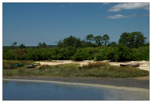 CP-DSC_8124-rivage fond Bassin