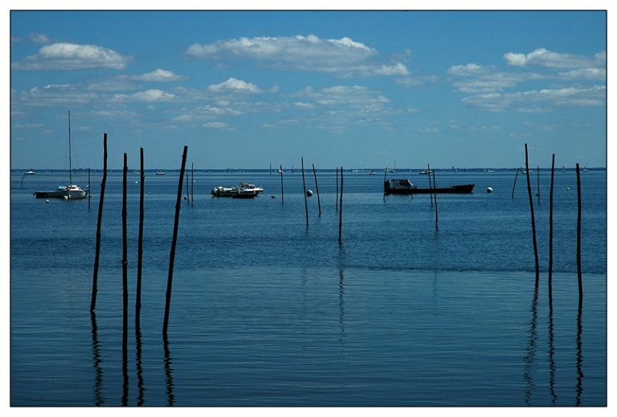 CP-DSC_8167-piquets, bateaux & Bassin