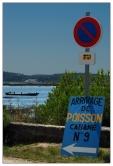CP-DSC_8189-panneau arrivage poisson